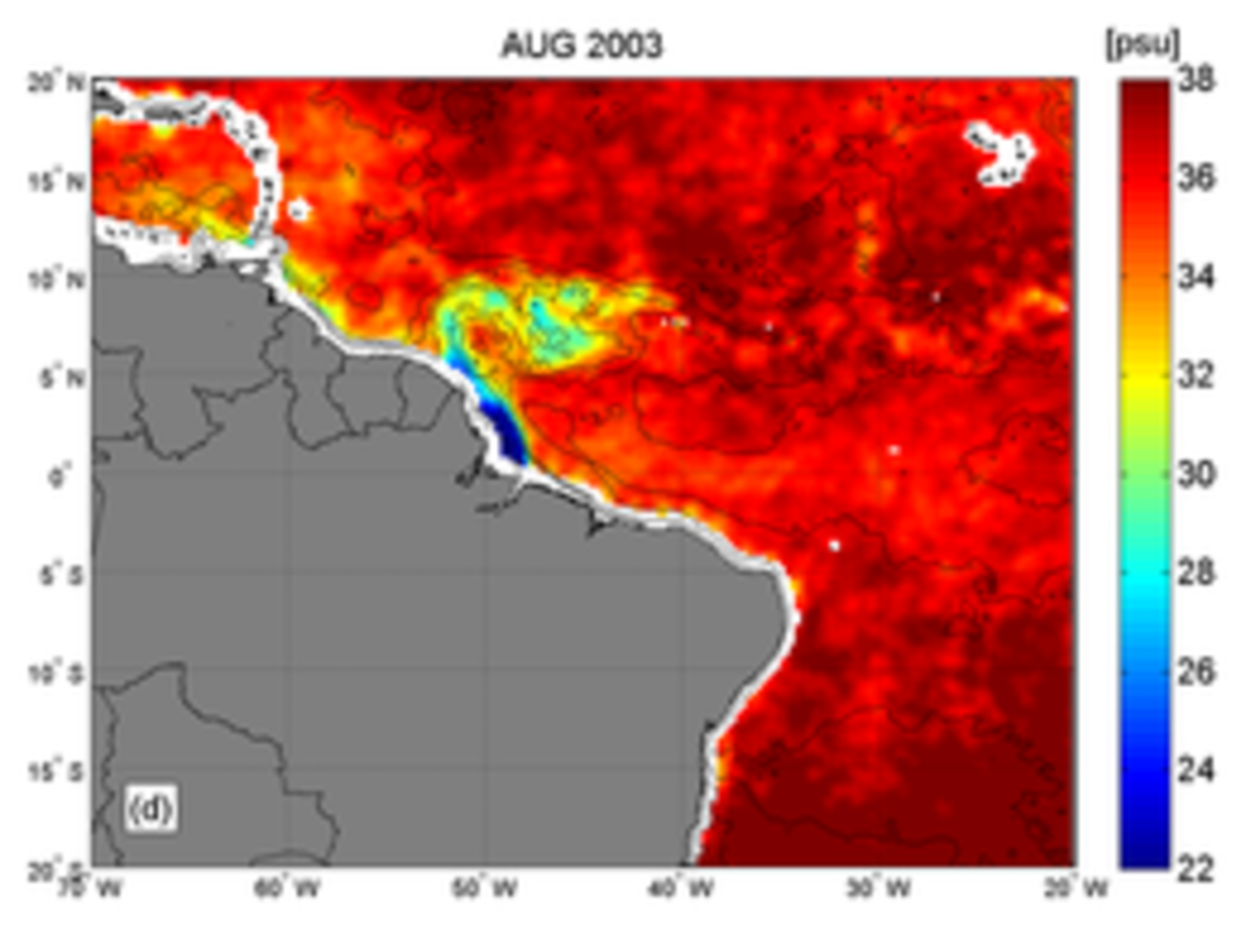 Sea Surface Salinity